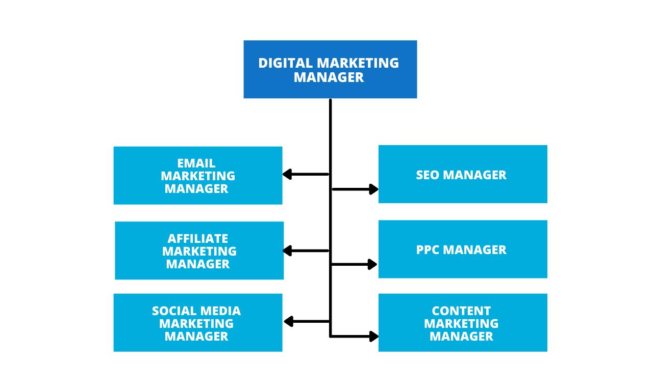 Digital Marketing Manager Role