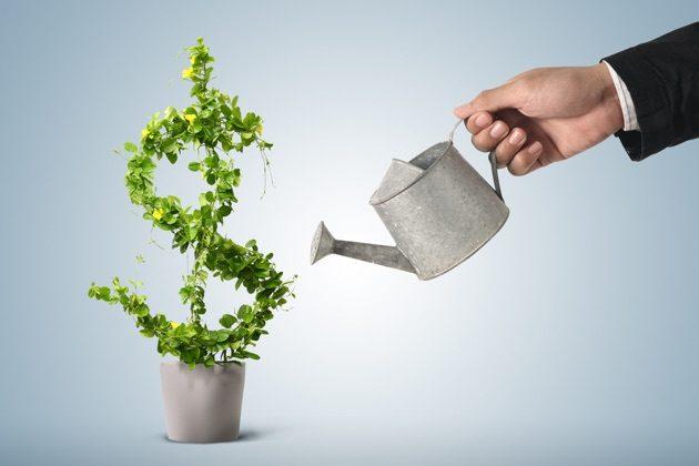 make a profitable website