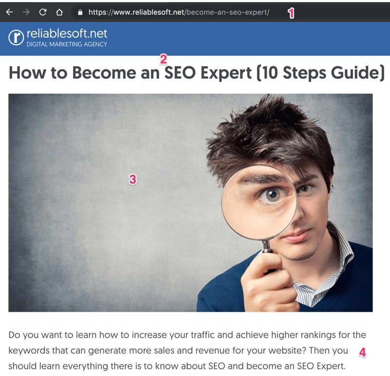 WordPress On Page SEO Example
