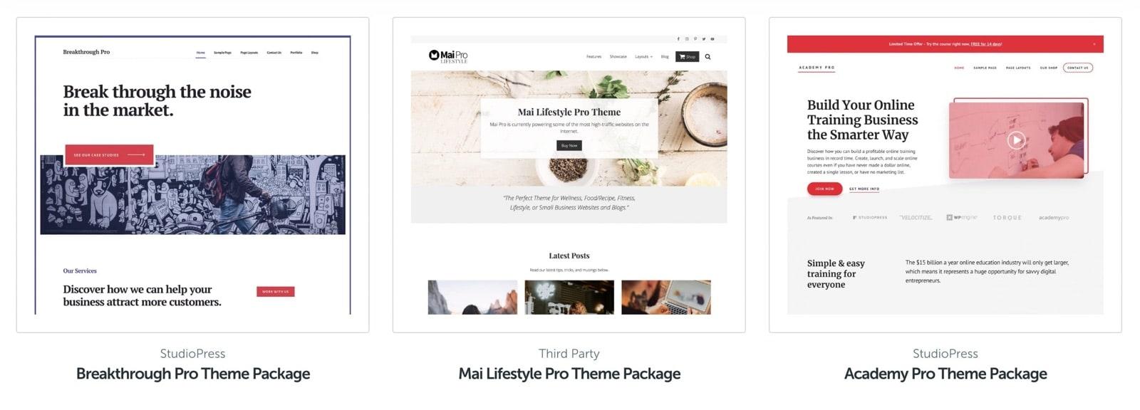 WordPress Premium Themes