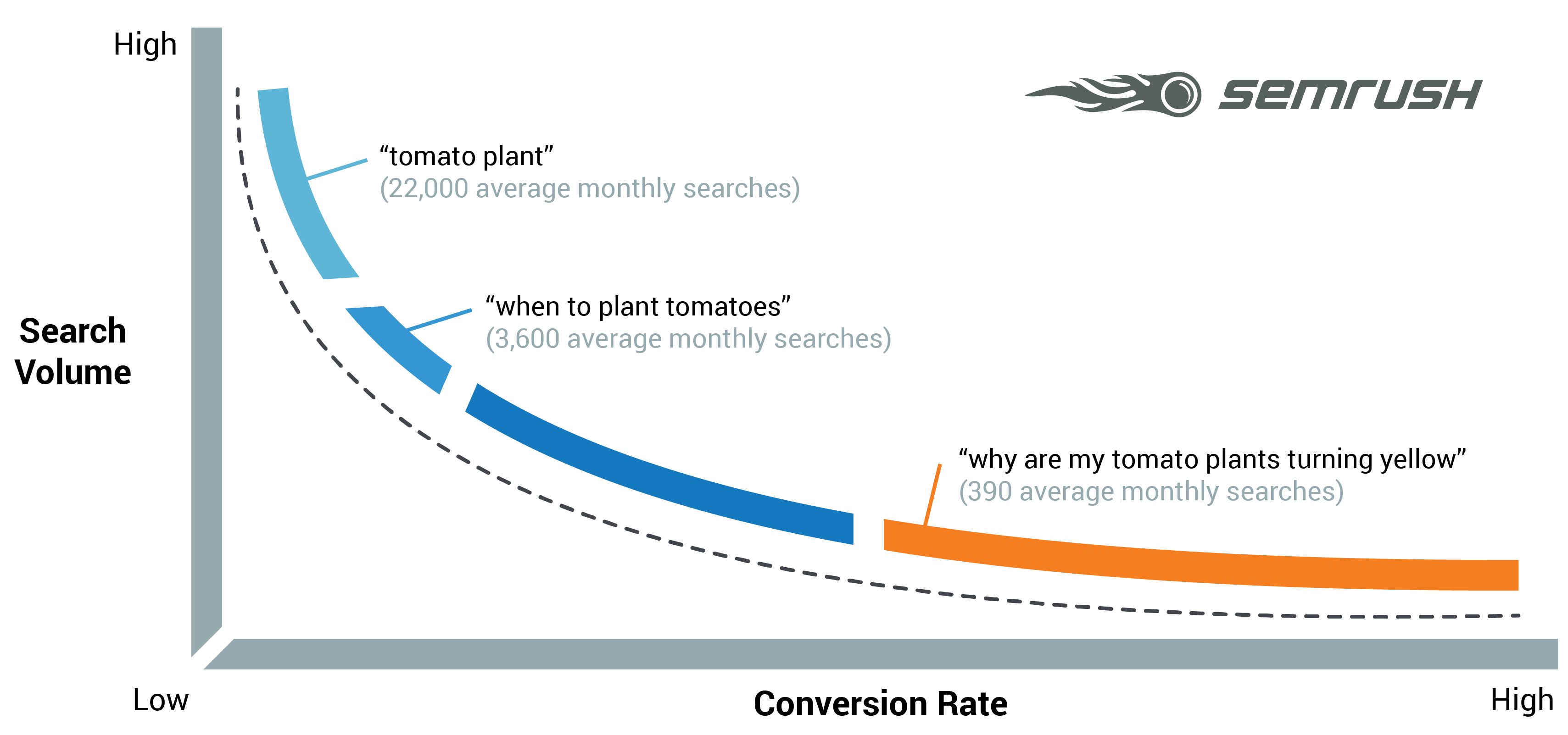 Long Tail Keywords - Search Curve