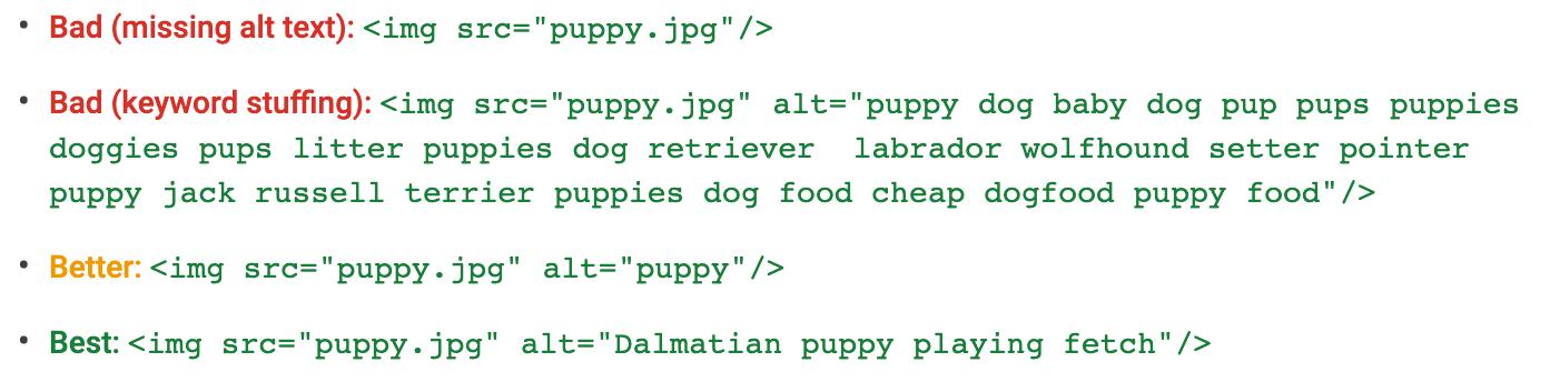 Image SEO Alt Text Example