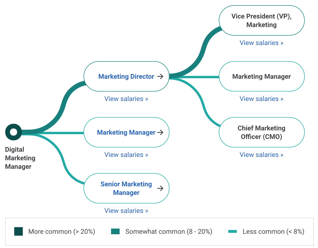 Digital Marketing Manager Career Path