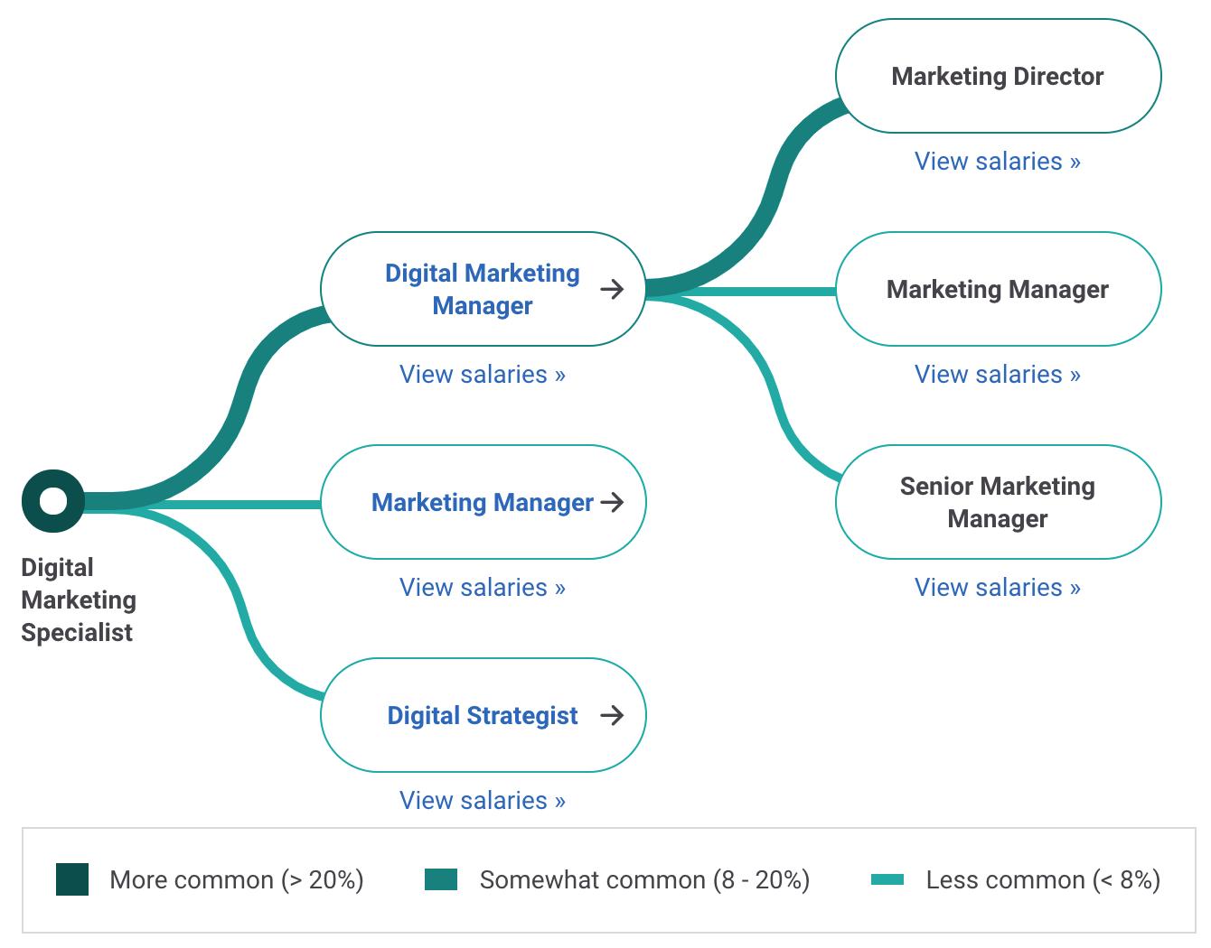 Digital Marketing Specialist Career Path
